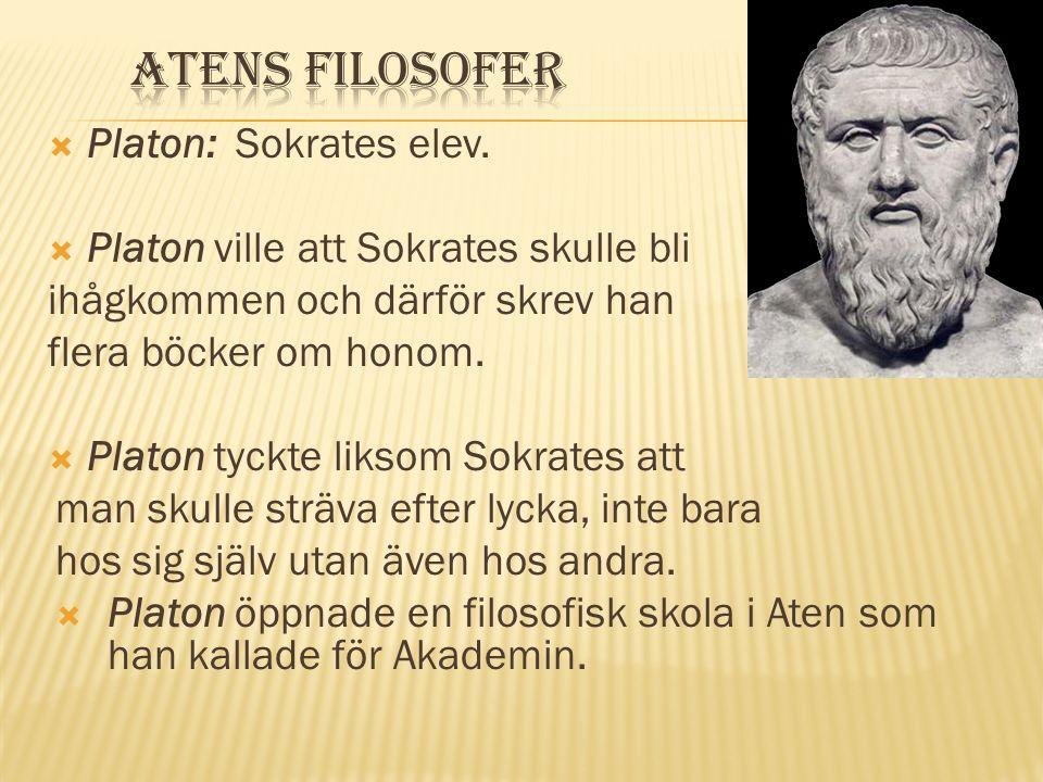  Sokrates undervisade genom att ställa frågor till sina elever så att de skulle använda sitt förnuft.