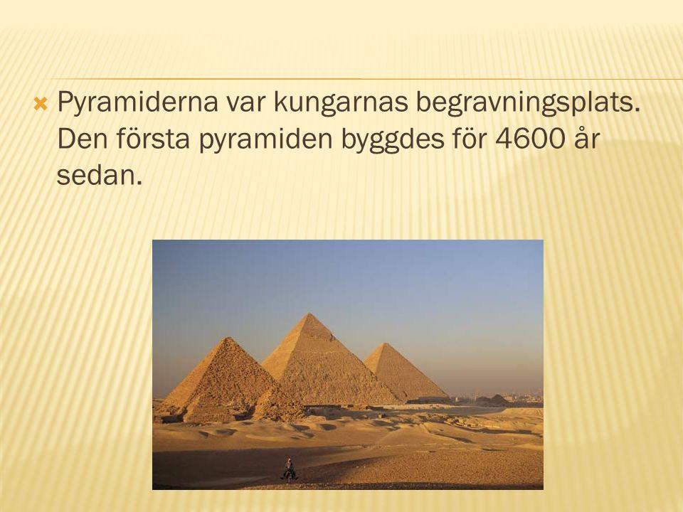  Pyramiderna var kungarnas begravningsplats. Den första pyramiden byggdes för 4600 år sedan.