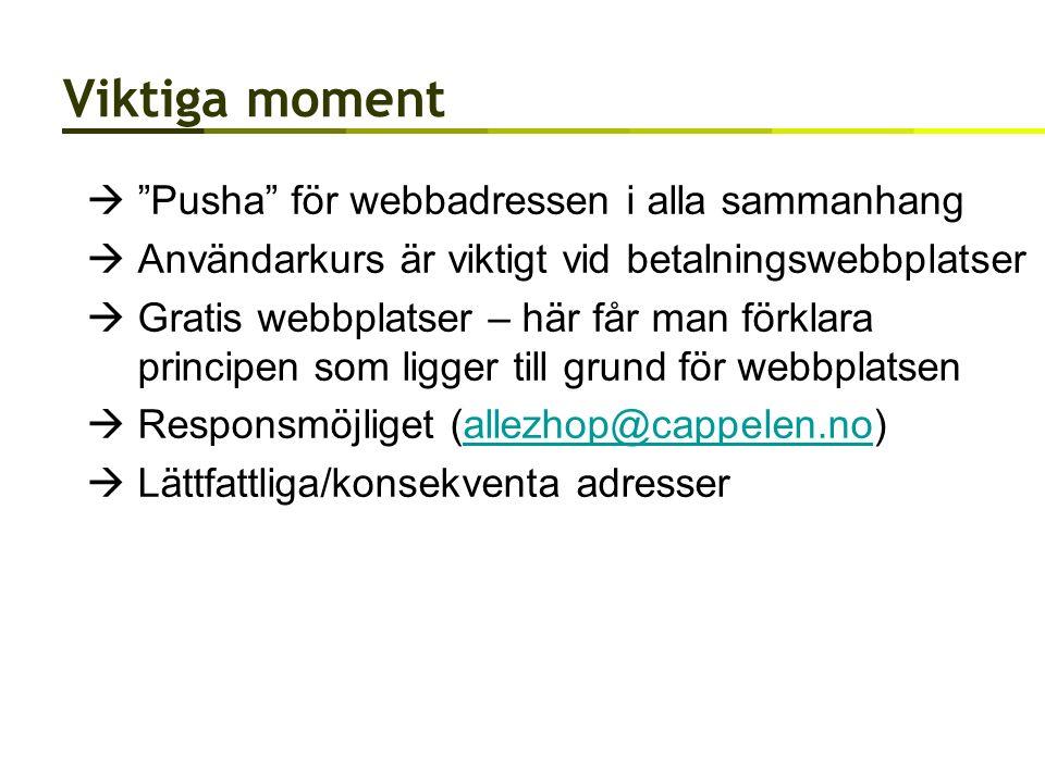 Viktiga moment  Pusha för webbadressen i alla sammanhang  Användarkurs är viktigt vid betalningswebbplatser  Gratis webbplatser – här får man förklara principen som ligger till grund för webbplatsen  Responsmöjliget (allezhop@cappelen.no)allezhop@cappelen.no  Lättfattliga/konsekventa adresser