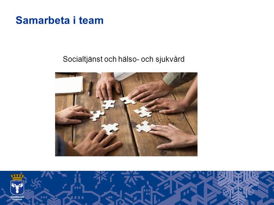 Samarbeta i team Socialtjänst och hälso- och sjukvård