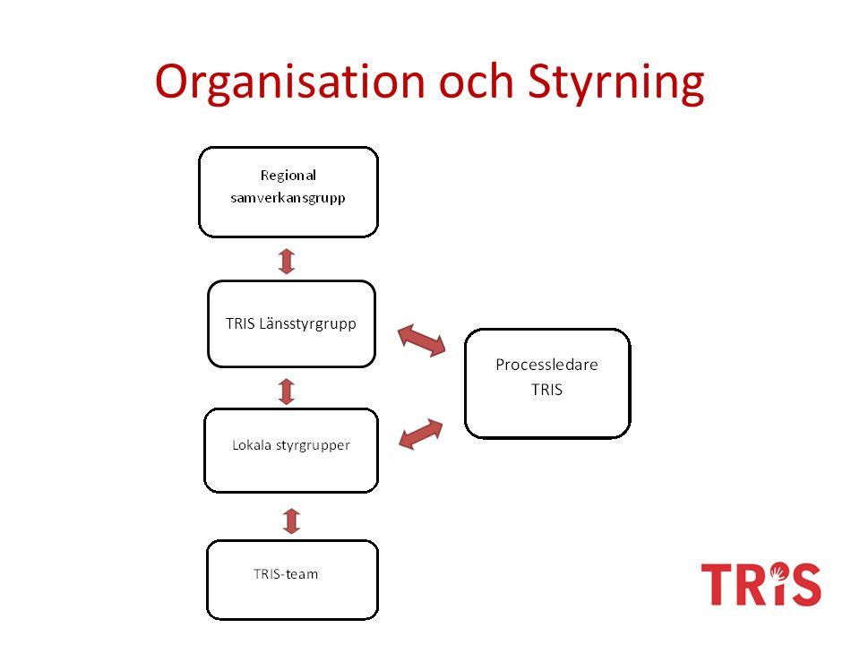 Organisation och Styrning TRIS Länsstyrgrupp