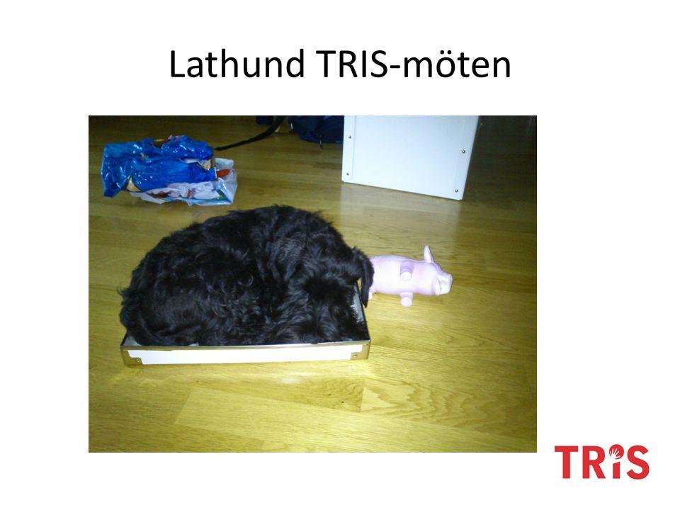 Lathund TRIS-möten