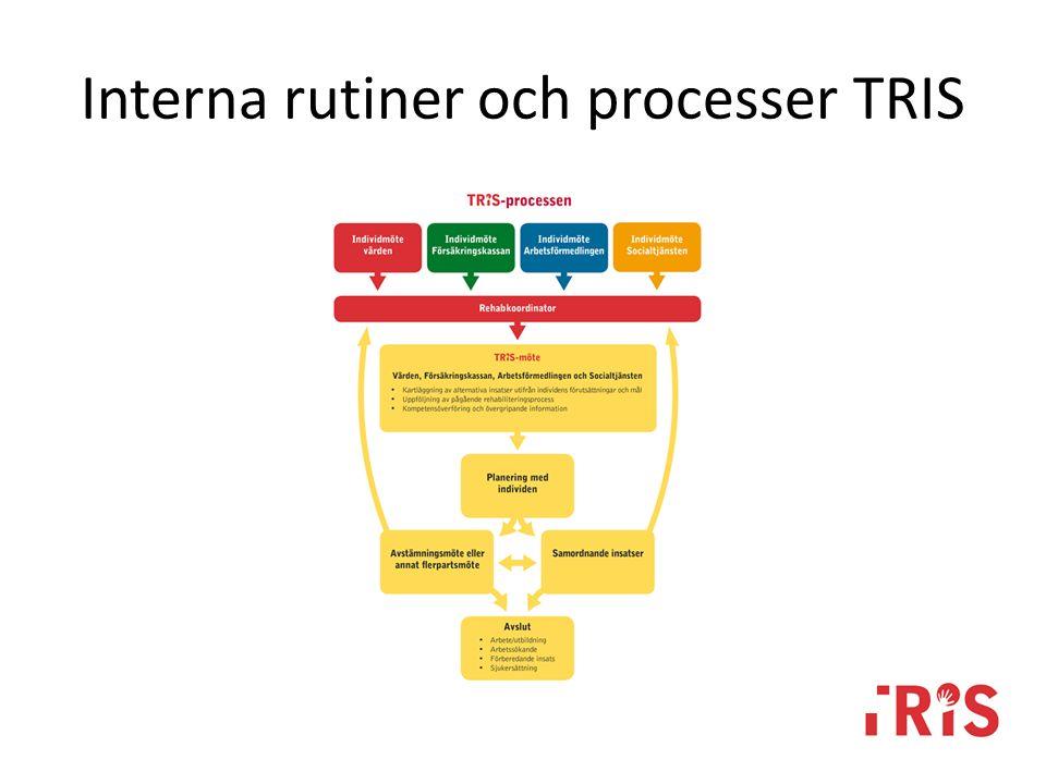 Interna rutiner och processer TRIS