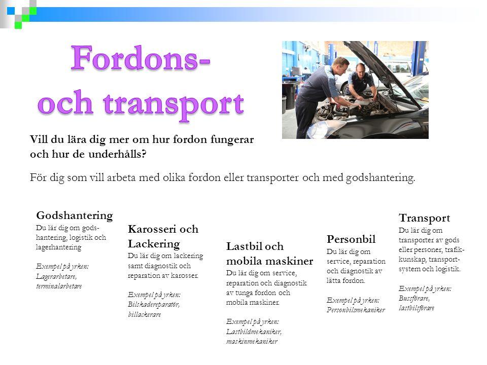 Vill du lära dig mer om hur fordon fungerar och hur de underhålls? För dig som vill arbeta med olika fordon eller transporter och med godshantering. G