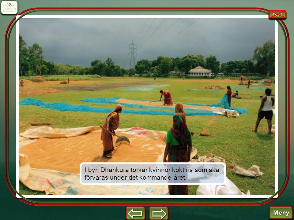 I byn Dhankura torkar kvinnor kokt ris som ska förvaras under det kommande året.