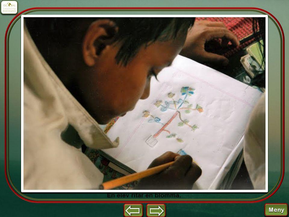 En elev ritar en blomma.