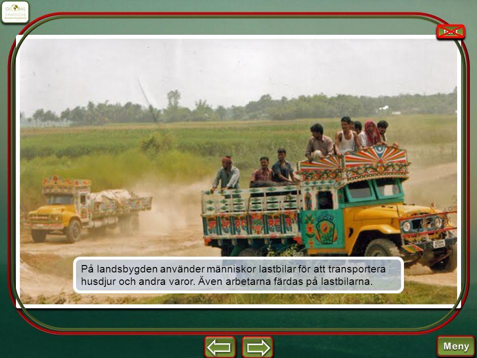 På landsbygden använder människor lastbilar för att transportera husdjur och andra varor. Även arbetarna färdas på lastbilarna.