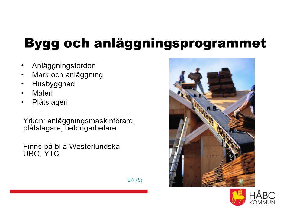 Bygg och anläggningsprogrammet Anläggningsfordon Mark och anläggning Husbyggnad Måleri Plåtslageri Yrken: anläggningsmaskinförare, plåtslagare, betongarbetare Finns på bl a Westerlundska, UBG, YTC BA (8)