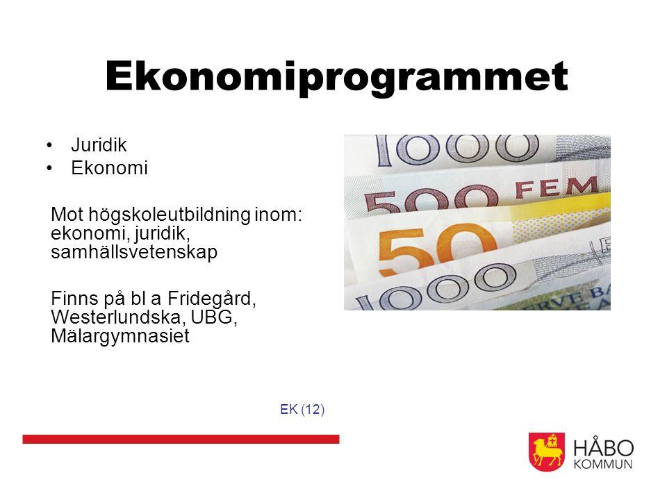 Ekonomiprogrammet Juridik Ekonomi Mot högskoleutbildning inom: ekonomi, juridik, samhällsvetenskap Finns på bl a Fridegård, Westerlundska, UBG, Mälargymnasiet EK (12)