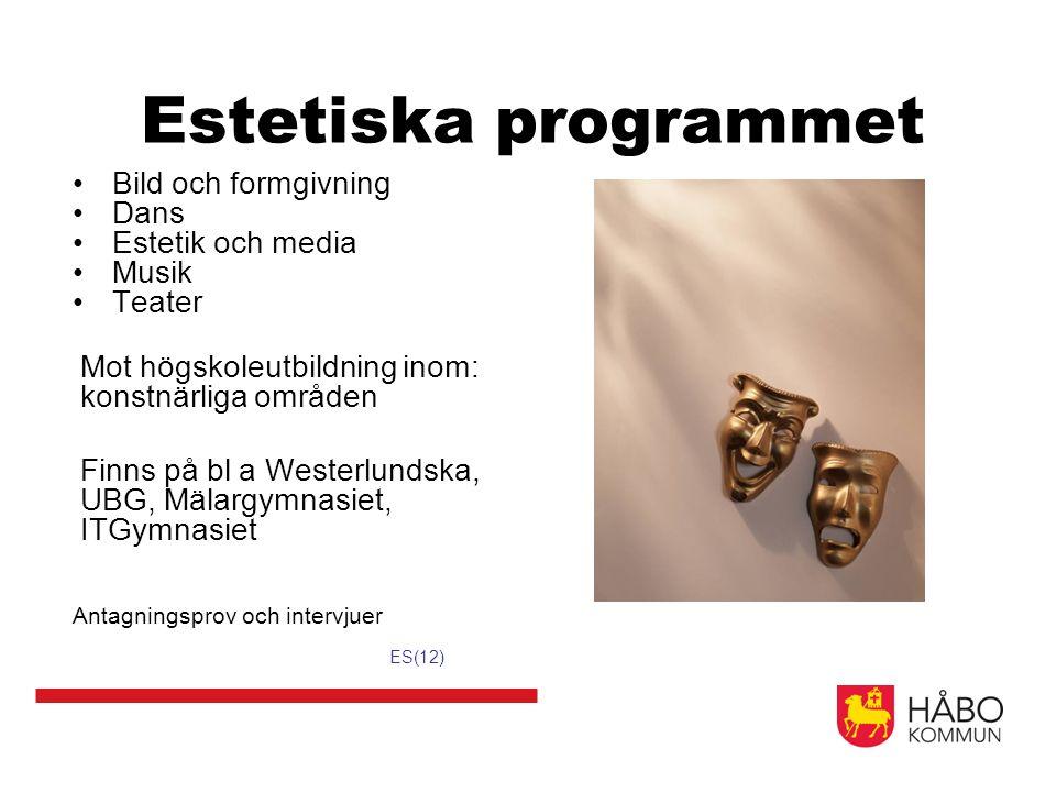 Estetiska programmet Bild och formgivning Dans Estetik och media Musik Teater Mot högskoleutbildning inom: konstnärliga områden Finns på bl a Westerlu