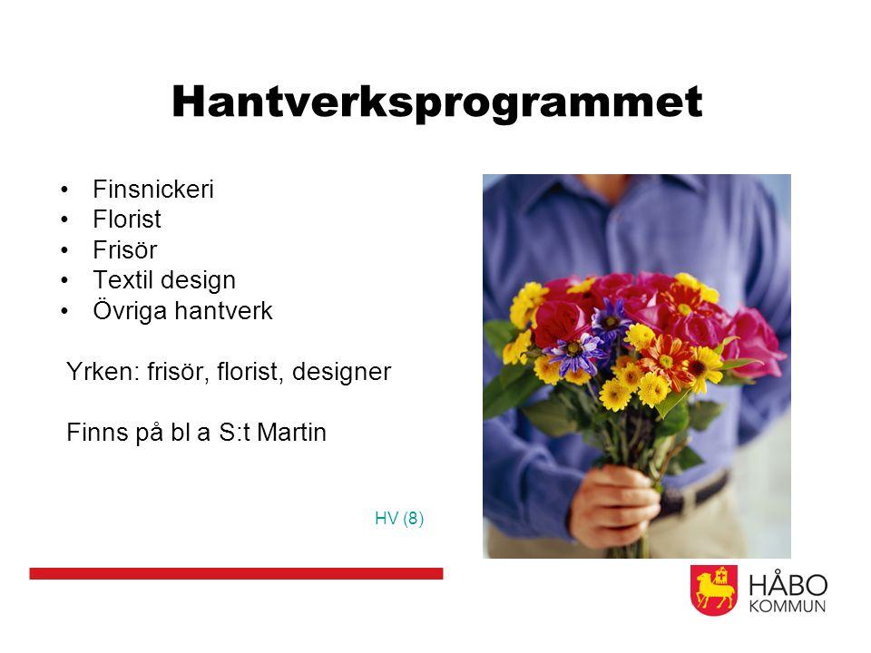 Hantverksprogrammet Finsnickeri Florist Frisör Textil design Övriga hantverk Yrken: frisör, florist, designer Finns på bl a S:t Martin HV (8)