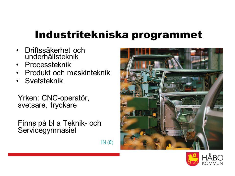 Industritekniska programmet Driftssäkerhet och underhållsteknik Processteknik Produkt och maskinteknik Svetsteknik Yrken: CNC-operatör, svetsare, tryc