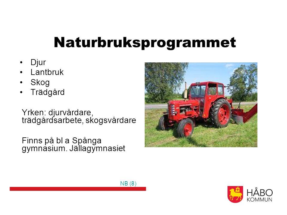 Naturbruksprogrammet Djur Lantbruk Skog Trädgård Yrken: djurvårdare, trädgårdsarbete, skogsvårdare Finns på bl a Spånga gymnasium.