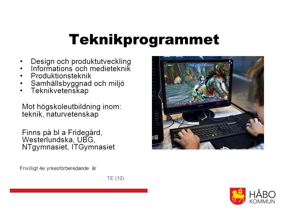 Teknikprogrammet Design och produktutveckling Informations och medieteknik Produktionsteknik Samhällsbyggnad och miljö Teknikvetenskap Mot högskoleutb
