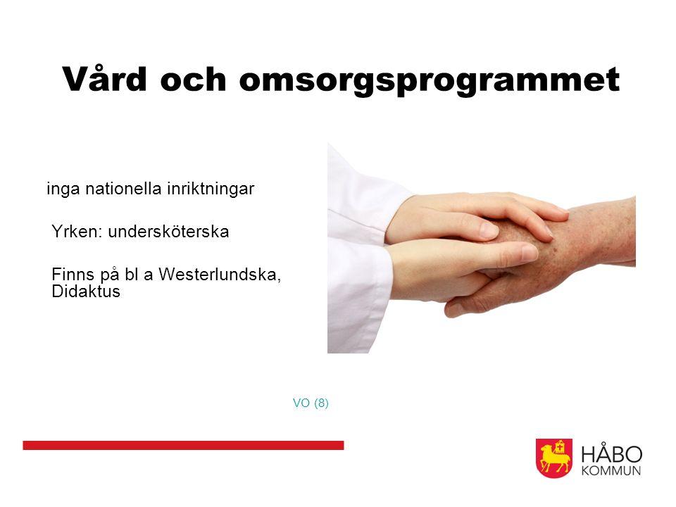 Vård och omsorgsprogrammet inga nationella inriktningar Yrken: undersköterska Finns på bl a Westerlundska, Didaktus VO (8)