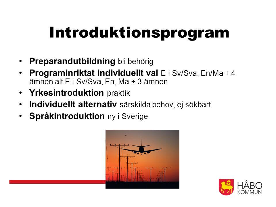 Introduktionsprogram Preparandutbildning bli behörig Programinriktat individuellt val E i Sv/Sva, En/Ma + 4 ämnen alt E i Sv/Sva, En, Ma + 3 ämnen Yrkesintroduktion praktik Individuellt alternativ särskilda behov, ej sökbart Språkintroduktion ny i Sverige