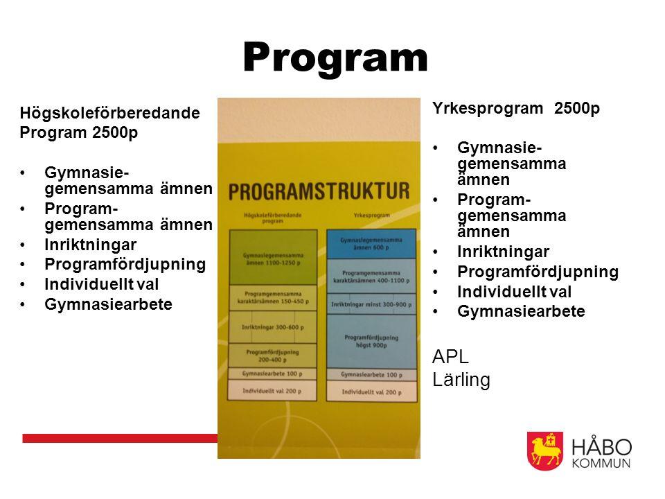 Program Högskoleförberedande Program 2500p Gymnasie- gemensamma ämnen Program- gemensamma ämnen Inriktningar Programfördjupning Individuellt val Gymnasiearbete Yrkesprogram 2500p Gymnasie- gemensamma ämnen Program- gemensamma ämnen Inriktningar Programfördjupning Individuellt val Gymnasiearbete APL Lärling