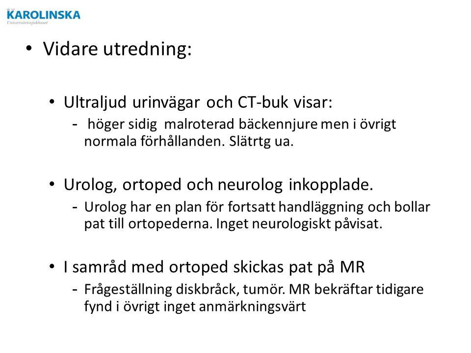 Vidare utredning: Ultraljud urinvägar och CT-buk visar: - höger sidig malroterad bäckennjure men i övrigt normala förhållanden.