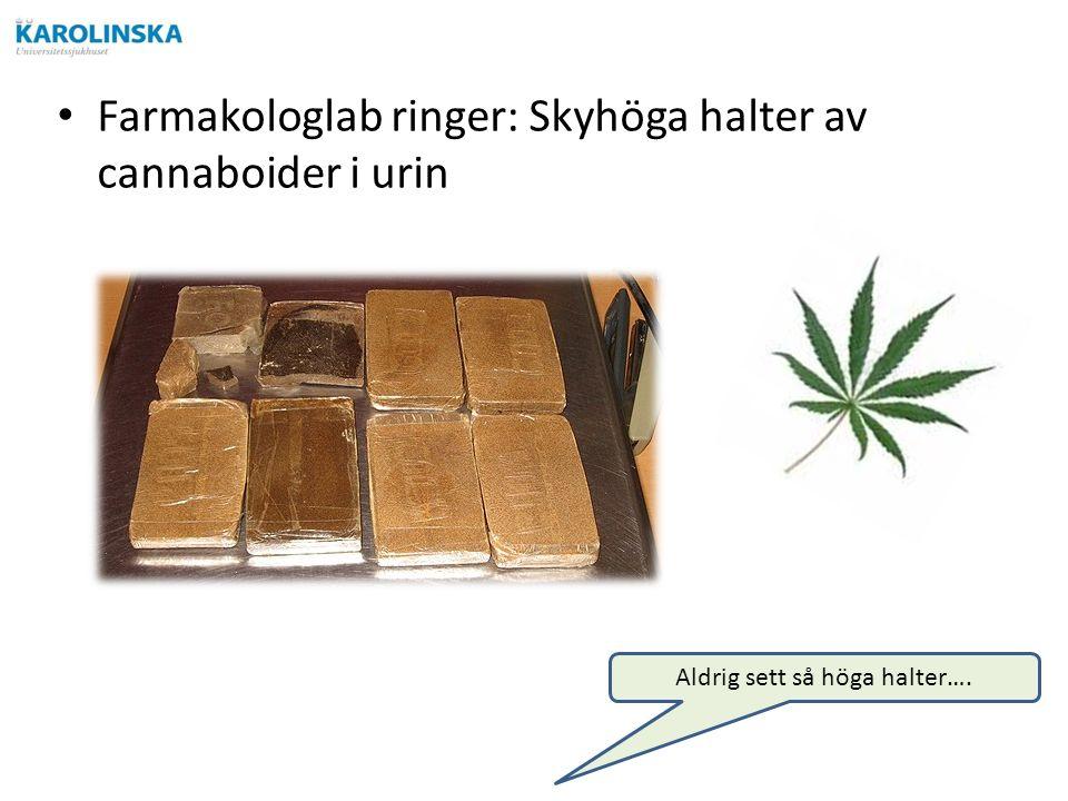 Farmakologlab ringer: Skyhöga halter av cannaboider i urin Aldrig sett så höga halter….
