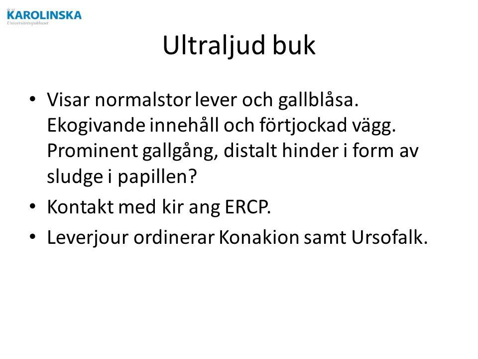 Ultraljud buk Visar normalstor lever och gallblåsa.