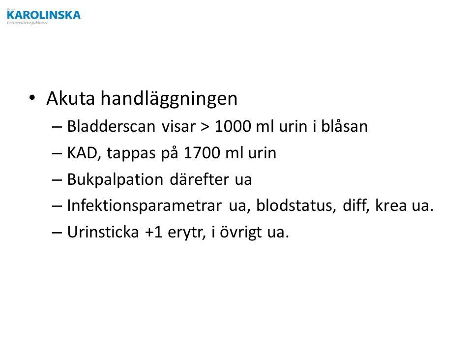 Akuta handläggningen – Bladderscan visar > 1000 ml urin i blåsan – KAD, tappas på 1700 ml urin – Bukpalpation därefter ua – Infektionsparametrar ua, blodstatus, diff, krea ua.