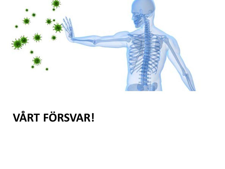 VÅRT FÖRSVAR!