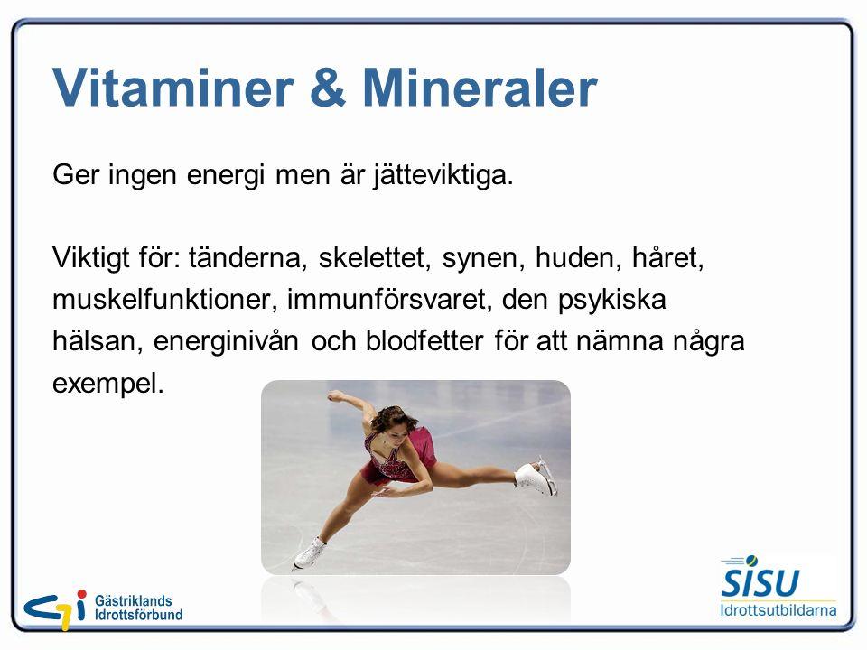 Vitaminer & Mineraler Ger ingen energi men är jätteviktiga.