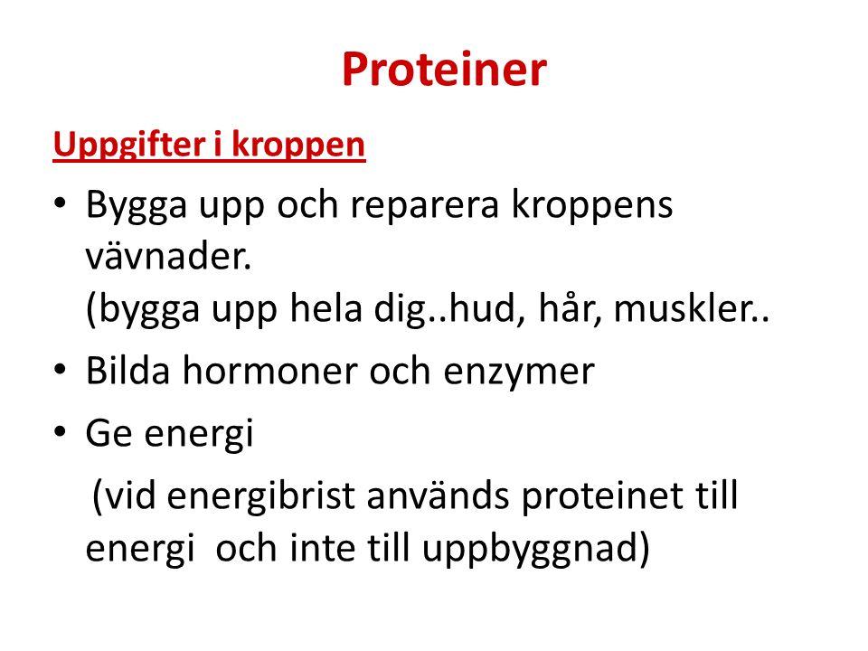 Proteiner Uppgifter i kroppen Bygga upp och reparera kroppens vävnader. (bygga upp hela dig..hud, hår, muskler.. Bilda hormoner och enzymer Ge energi