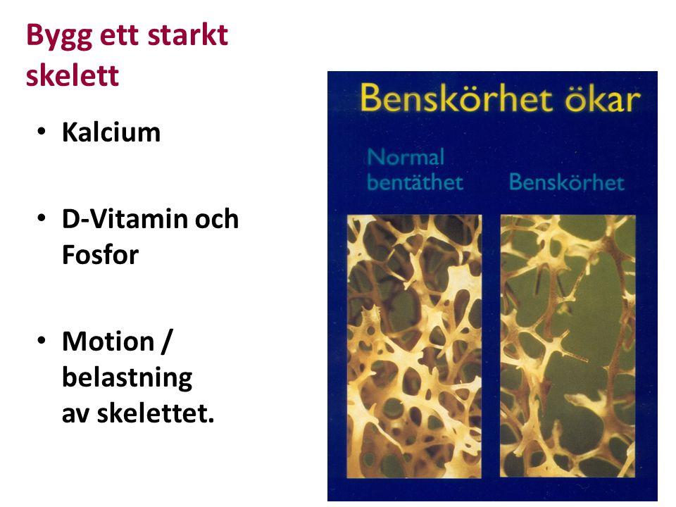 Bygg ett starkt skelett Kalcium D-Vitamin och Fosfor Motion / belastning av skelettet.
