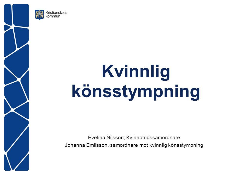 Kvinnlig könsstympning Evelina Nilsson, Kvinnofridssamordnare Johanna Emilsson, samordnare mot kvinnlig könsstympning