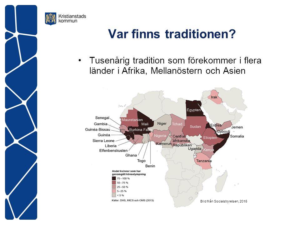 WHOs klassificering på kvinnlig könsstympning Typ I.