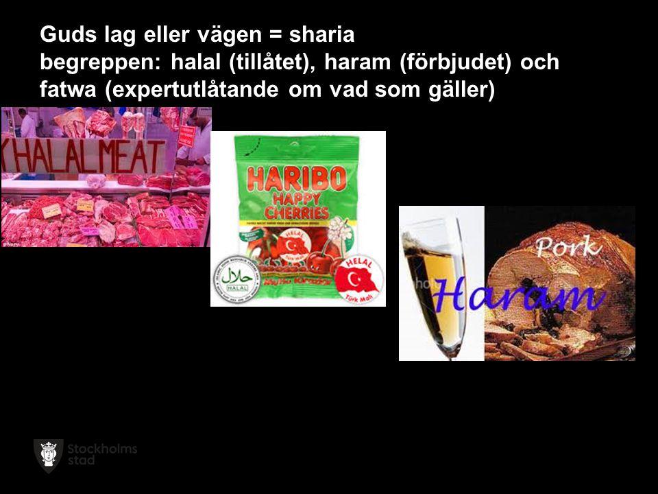 Guds lag eller vägen = sharia begreppen: halal (tillåtet), haram (förbjudet) och fatwa (expertutlåtande om vad som gäller)
