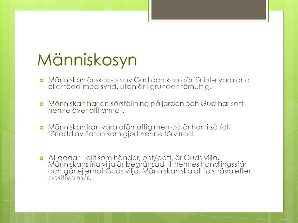 Människosyn  Människan är skapad av Gud och kan därför inte vara ond eller född med synd, utan är i grunden förnuftig.