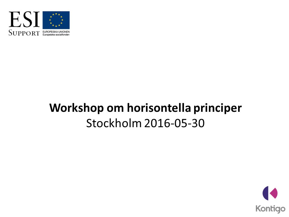 Workshop om horisontella principer Stockholm 2016-05-30