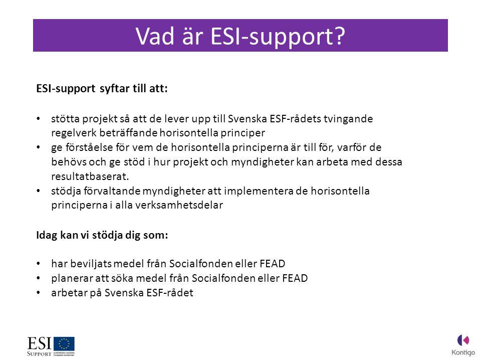 Vad är ESI-support.