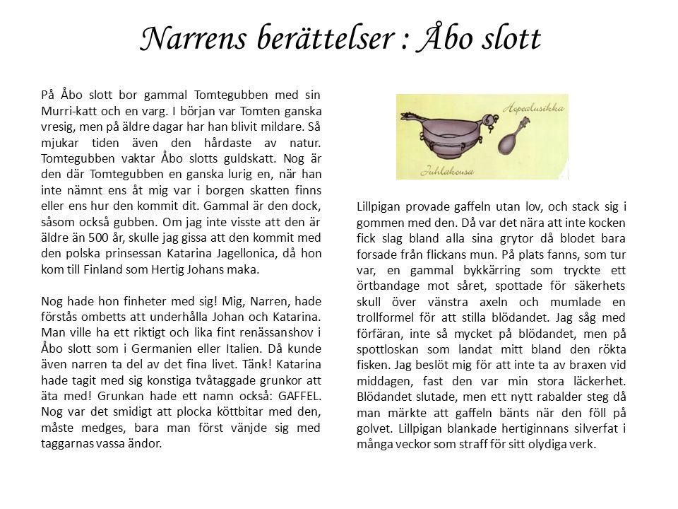 Narrens berättelser : Åbo slott På Åbo slott bor gammal Tomtegubben med sin Murri-katt och en varg.