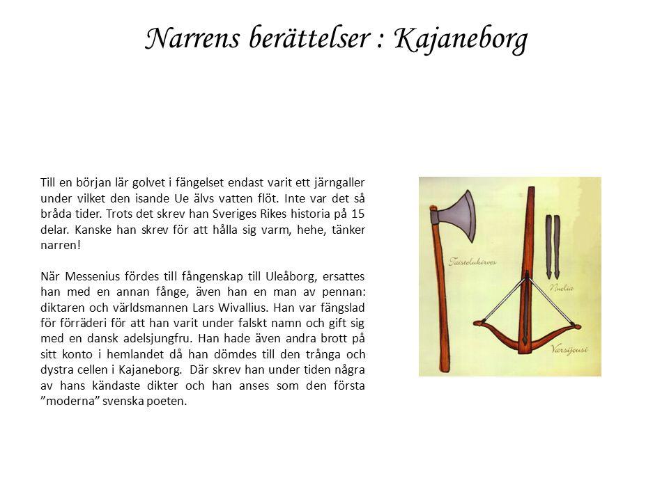 Narrens berättelser :Raseborg Jag kommer med vemod ihåg tiderna då jag tänkte på en sjörövarhistoria som värden berättat för gästerna under middagen medan jag låg på halmen i gästhuset vid Raseborg.