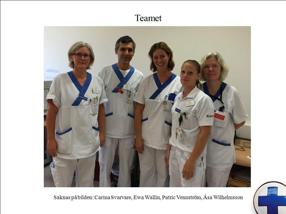 Teamet Saknas på bilden: Carina Svarvare, Ewa Wallin, Patric Vennström, Åsa Wilhelmsson