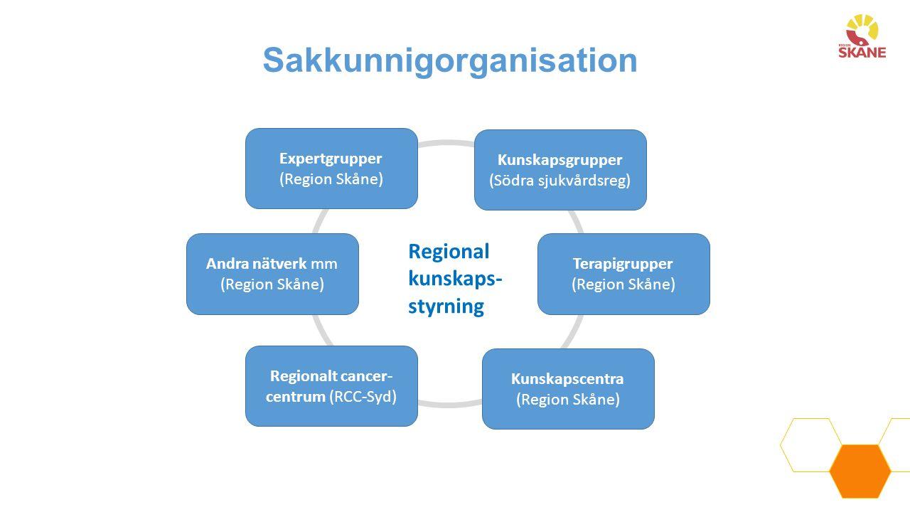 Sakkunnigorganisation Expertgrupper (Region Skåne) Kunskapsgrupper (Södra sjukvårdsreg) Kunskapscentra (Region Skåne) Terapigrupper (Region Skåne) And