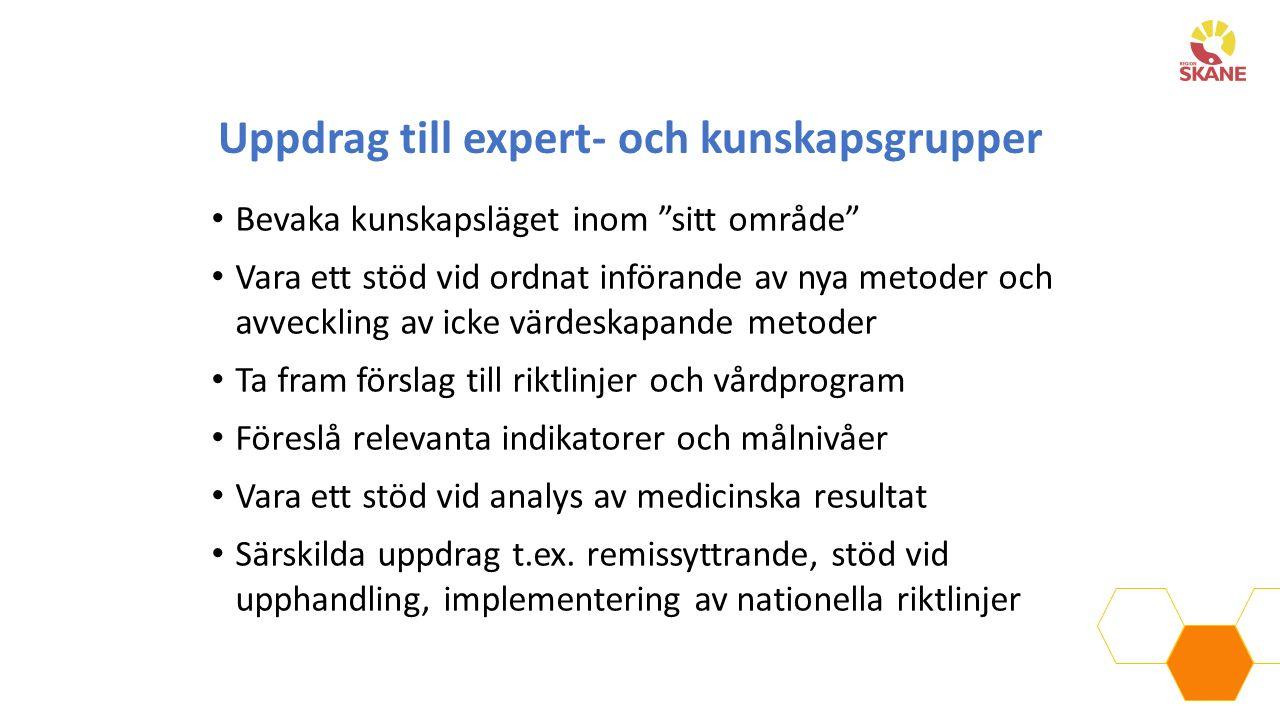 """Uppdrag till expert- och kunskapsgrupper Bevaka kunskapsläget inom """"sitt område"""" Vara ett stöd vid ordnat införande av nya metoder och avveckling av i"""