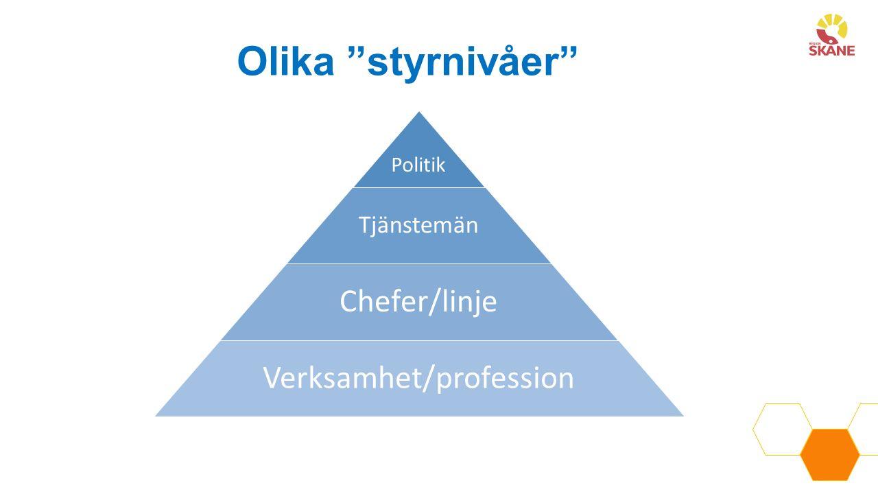 Göran Stiernstedts utredning om effektiv sjukvård Svensk sjukvård ligger i framkant när det gäller medicinska resultat men efter när det gäller produktivitet och effektivitet Sverige har en sjukhustung struktur med en primärvård som inte tar ett helhetsansvar för den basala hälso- och sjukvården Det handlar inte om resursbrist utan om att vi använder våra resurser fel och att våra styrmodeller och arbetssätt behöver förändras Det produceras för många strategier, handlingsplaner och policys som resulterar detta i en splittrad styrning och brist på övergripande vision och mål Det finns en kultur i vården som inte gynnar samarbete över gränser och som inte alltid utgår från patientens behov