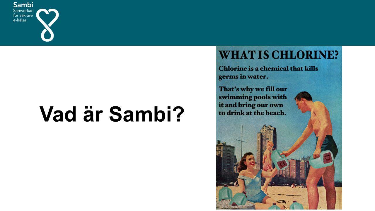 Vad är Sambi