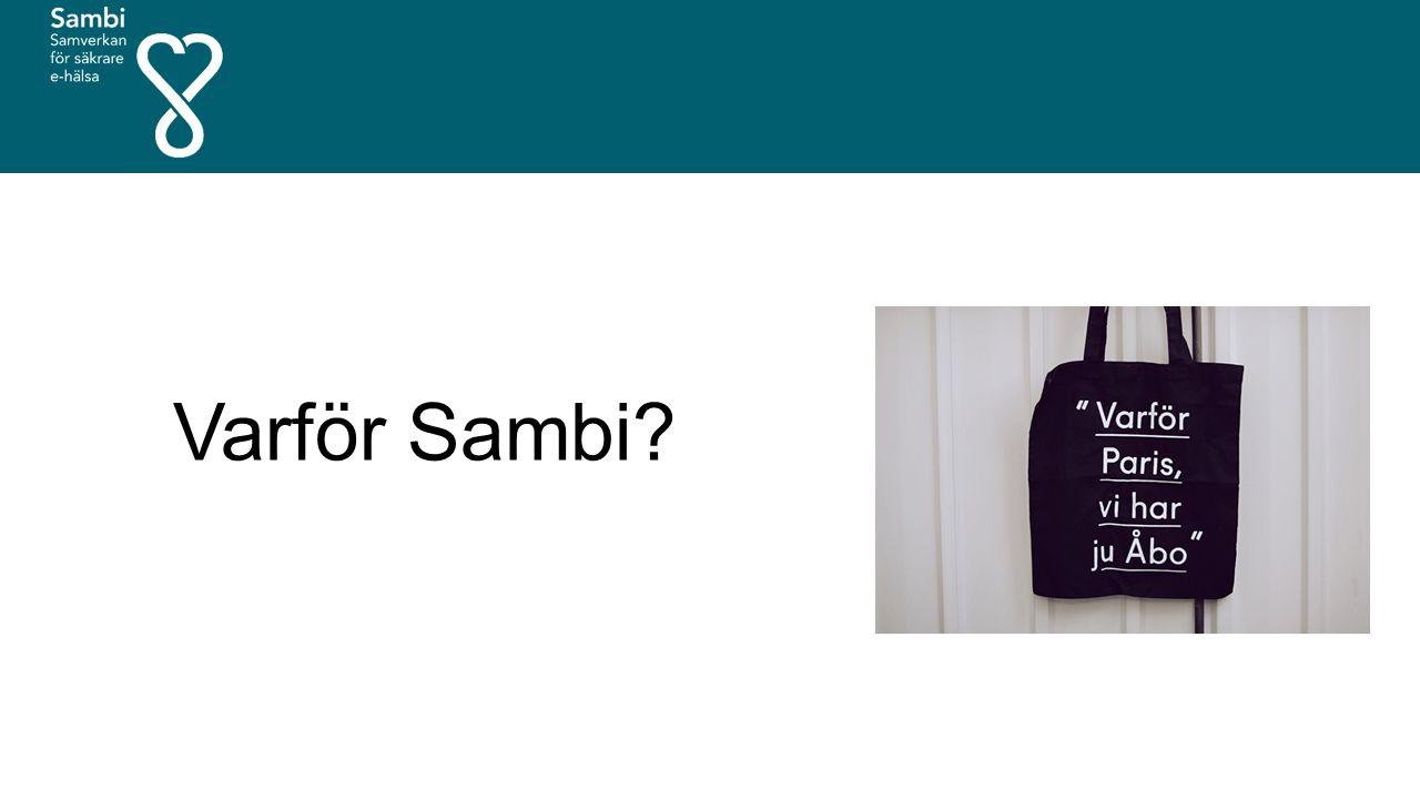 Gemensam standard Sambis tekniska krav SAML 2.0 Implementationsprofil eGov2 2.0 beskriver vilka delar av SAML som måste implementeras Deploymentprofilen saml2int beskriver vilka delar av SAML som måste vara i bruk samt hur dessa ska användas Namnstandard för anvisningstjänst Attributsprofiler