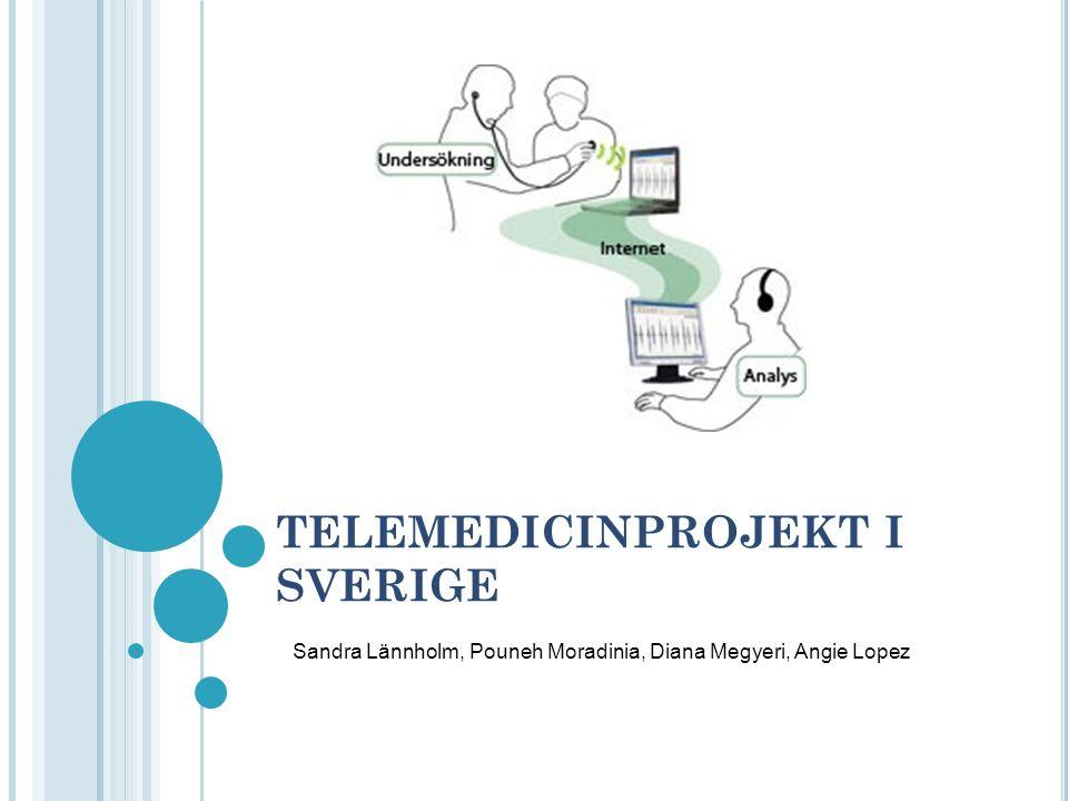TELEMEDICINPROJEKT I SVERIGE Sandra Lännholm, Pouneh Moradinia, Diana Megyeri, Angie Lopez