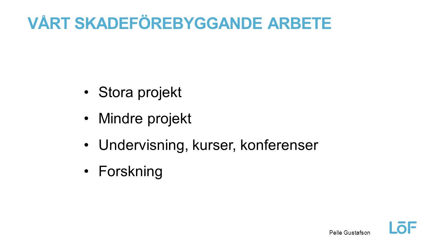 Löf Pelle Gustafson Stora projekt Mindre projekt Undervisning, kurser, konferenser Forskning VÅRT SKADEFÖREBYGGANDE ARBETE