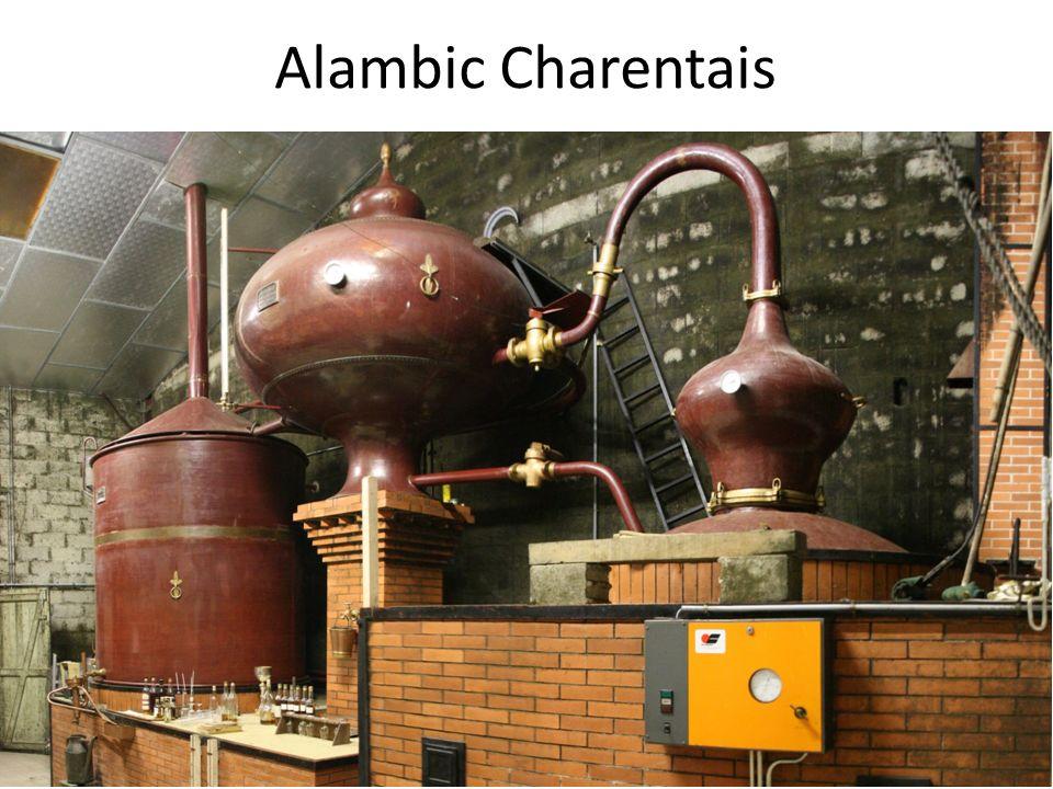 Alambic Charentais