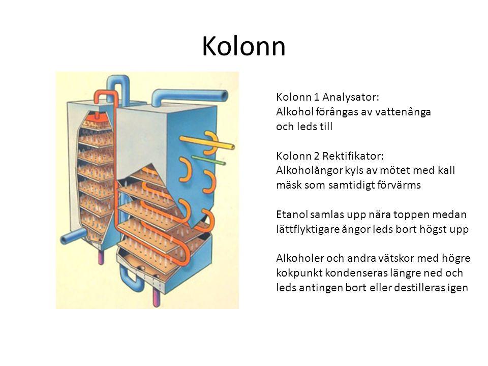 Kolonn Kolonn 1 Analysator: Alkohol förångas av vattenånga och leds till Kolonn 2 Rektifikator: Alkoholångor kyls av mötet med kall mäsk som samtidigt förvärms Etanol samlas upp nära toppen medan lättflyktigare ångor leds bort högst upp Alkoholer och andra vätskor med högre kokpunkt kondenseras längre ned och leds antingen bort eller destilleras igen