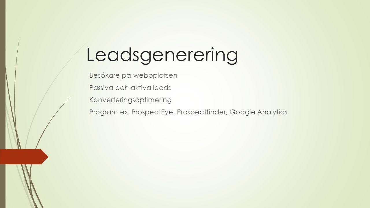 Leadsgenerering Besökare på webbplatsen Passiva och aktiva leads Konverteringsoptimering Program ex.