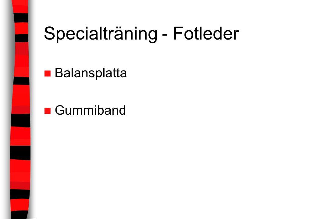 Specialträning - Fotleder Balansplatta Gummiband