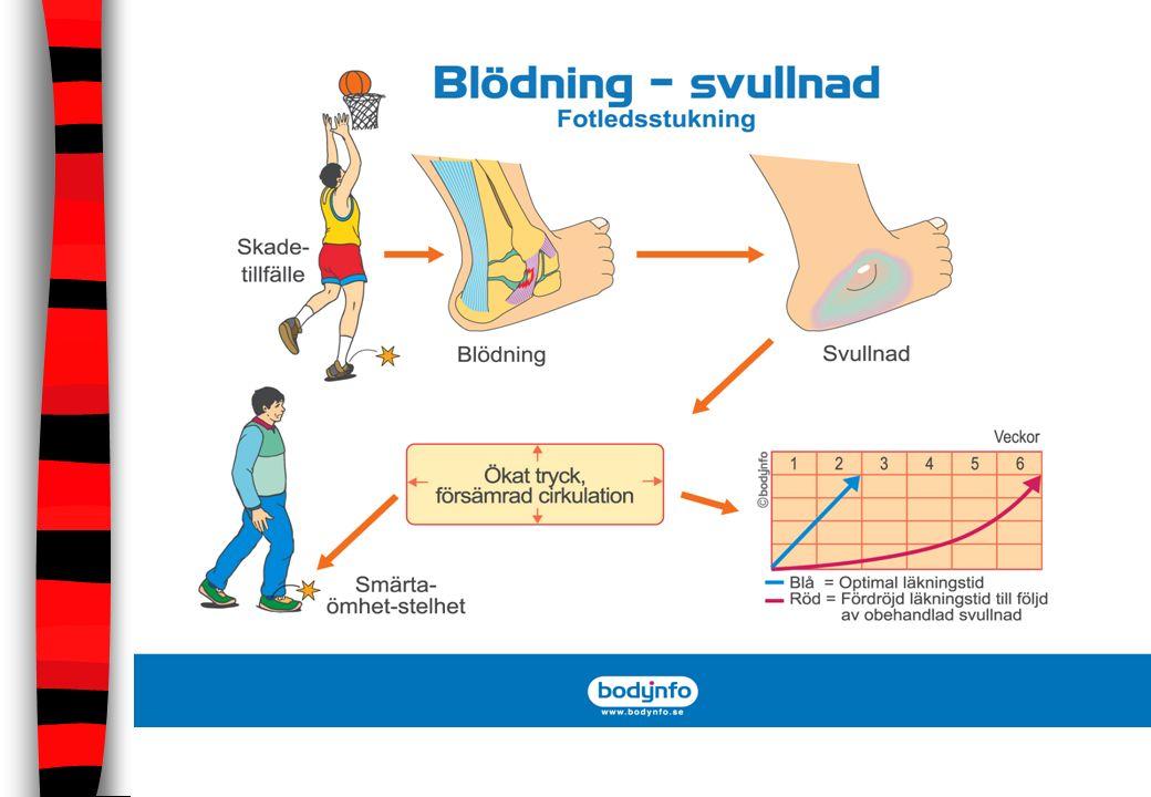 Skadeförebyggande träning/åtgärder Uppvärmning/nedvarvning Bålstabilitet Sjukdomsspridning Försäsongsträning Specialträning – ex Knäkontroll Behandling/undersökning Tejpning av skador
